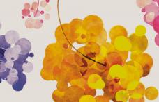 I nuovi vitigni resistenti alle malattie