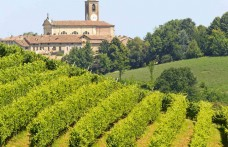 Pinot Nero Oltrepò Pavese: scoprilo in un weekend