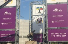 Vinitaly 2016. Game over