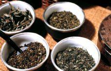Il vero blend nel tè è un mix di foglie