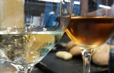I nuovi vini biodinamici di Borgo Paglianetto
