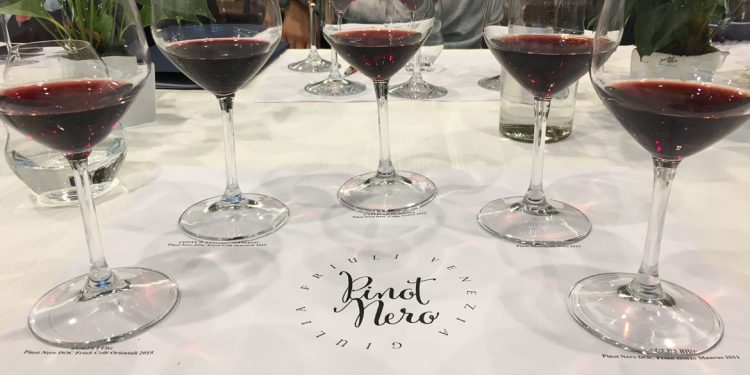 Pinot Nero Friuli Venezia Giulia: la nuova Rete d'Impresa