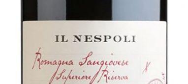 Romagna Sangiovese Riserva Il Nespoli 2013 – Poderi dal Nespoli