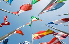 Dove va il mercato mondiale del vino? I dati Oiv 2016