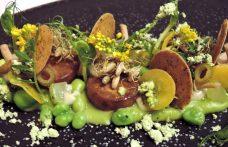 Alta cucina vegana: i premiati a The Vegetarian Chance 2017