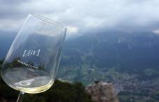Wine-tasting delle Aquile, gran finale per VinoVip 2017