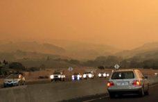 Inferno in Napa Valley. In diretta, parla Albiera Antinori