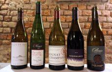 Pinot noir: un confronto mondiale dall'Oltrepò alla Nuova Zelanda