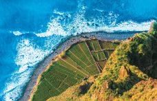 Vini vulcanici in Europa. Dall'Alsazia a Madeira