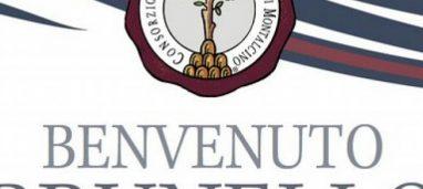 Brunello Riserva Poggio Doria 2012 Tenute Silvio Nardi