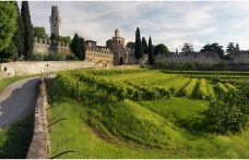 Autoctono in terra straniera: il Wildbacher dalla Stiria a Treviso