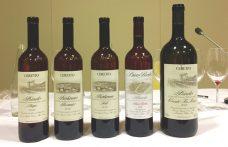 Cinque terroir delle Langhe nei cru di Ceretto