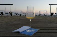 VinoVip al Forte: un giorno al centro del mondo del vino