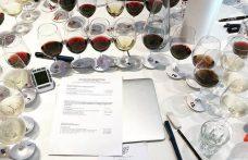 Prove d'esame da Master of Wine: tutte le soluzioni