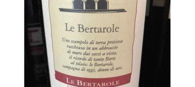 Valpolicella Classico Superiore Ripasso 2014 Le Bertarole
