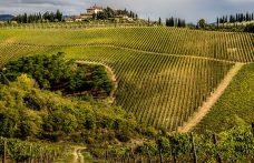 Tenuta Perano: Frescobaldi approda nel Chianti Classico