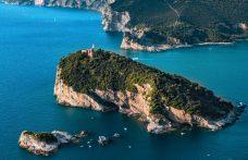Rinasce il vino dell'isola di Palmaria