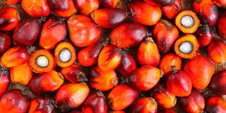 L'Indonesia blocca le importazioni di vino europeo