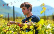 Florian Gojer, una vita con (e per) il vino