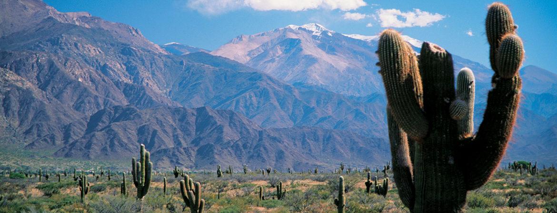 Argentina estrema. Passaggio a nord, tra i vigneti più alti del mondo