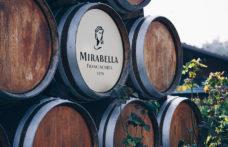 """Pinot bianco Brut Nature: il """"Franciacorta mancato"""" di Cantina Mirabella"""