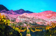 Argentina estrema. In viaggio da Mendoza alle Ande nella regione di Cuyo