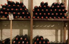 Capezzana, in un rosso di 90 anni il senso del terroir