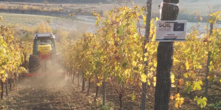 Soil4Wine: un nuovo strumento per gestire il suolo del vigneto