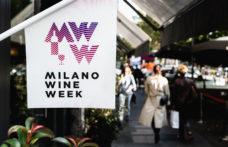 Milano Wine Week 2020, una guida ragionata