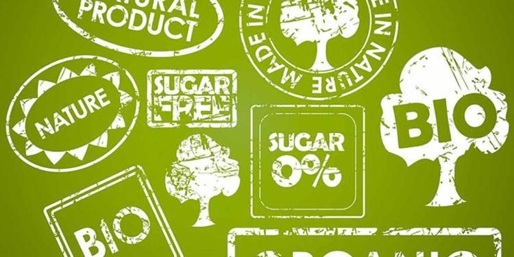 Biologici, biodinamici, vegani: tutte le certificazioni del vino sostenibile