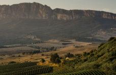 Gli altri spumanti: Sicilia