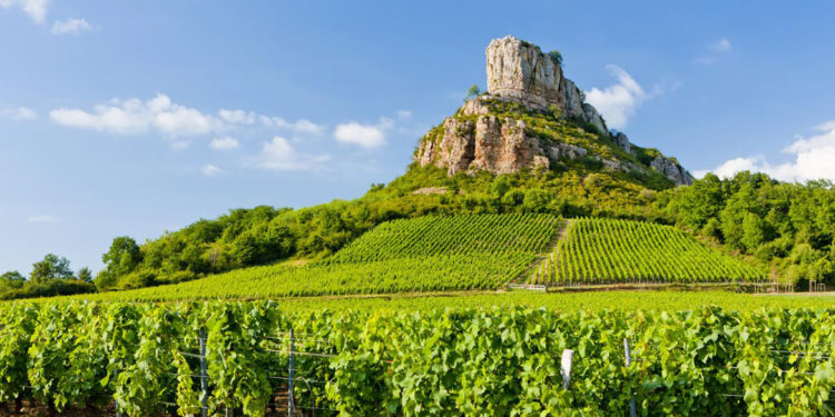 Borgogna: 22 Premier Cru per Pouilly-Fuissé Aoc
