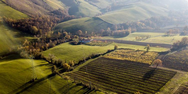 Gli interpreti del vino naturale: Emilia Romagna