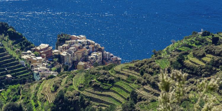 Gli interpreti del vino naturale in Liguria