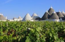 Puglia, orgoglio italiano su Forbes