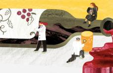 Impronte molecolari per prevenire le contraffazioni del vino