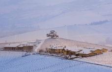 Gli interpreti del vino naturale nelle Langhe e nel Roero