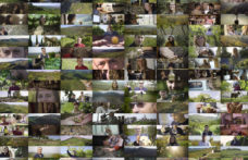 I video di Soave Terroir che spiegano le Unità Geografiche Aggiuntive