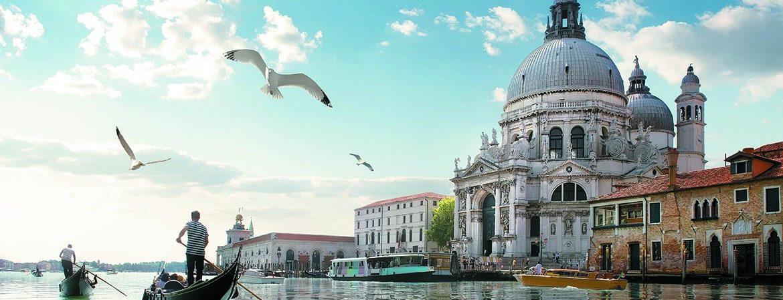 Pinot grigio delle Venezie, lo stile italiano amato all'estero
