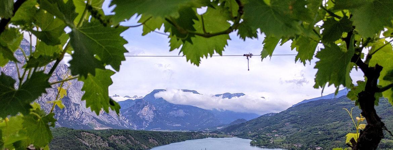 Gli interpreti del vino naturale in Trentino