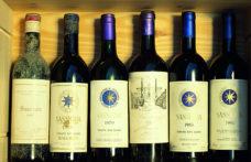 Dalla Toscana con furore: riflettori sul Sassicaia '18 e plauso per la Doc Valdarno di Sopra