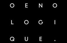 Chi seguire sui social: Club Oenologique