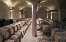 Moncaro tra viticoltura 4.0 e blockchain