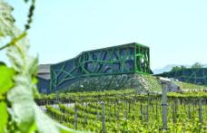 Architetture del vino: Cantina Tramin