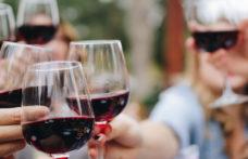 Generation Treaters: giovani, carini e… bevitori