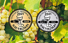 Concours Mondial du Sauvignon 2021: i migliori vini italiani