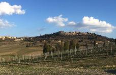 Pieve, la nuova tipologia del Nobile di Montepulciano