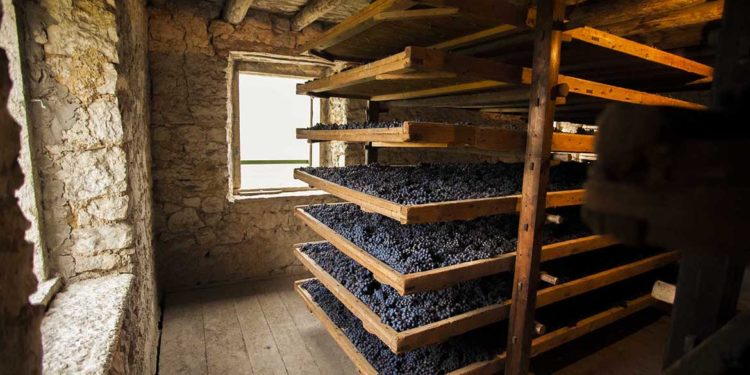 Il Top delle guide vini 2021: i migliori Amarone