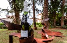 Ius Naturae Bortolomiol è il primo vino al mondo certificato Epd