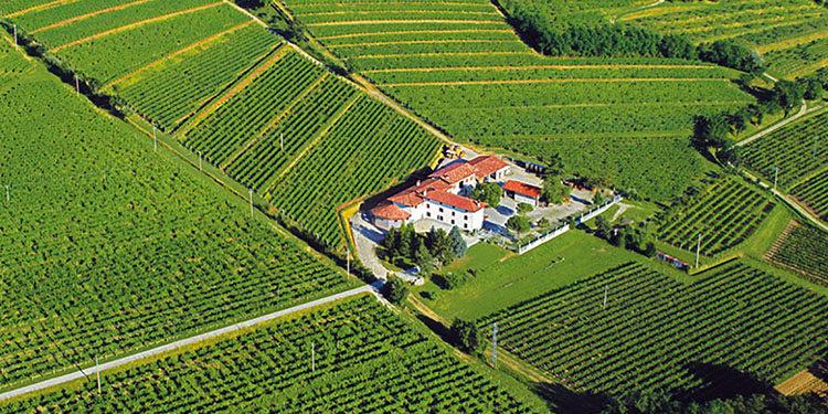 Doc Friuli & Friends: le mille anime del Pinot grigio, dall'afternoon wine al ramato